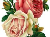 Pic Of A Drawing Of A Rose Drawing Roses Mttech Draw