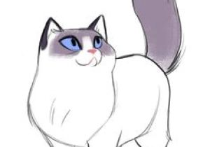 Pretty Drawing Of A Cat 2291 Best Cat Drawings Images