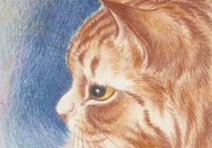 Pretty Drawing Of A Cat 626 Best Artistic Ginger Cat Love Images Ginger Cats Cat Drawing