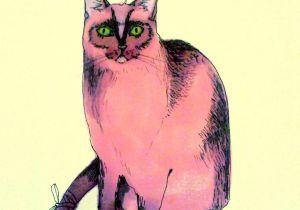 Pretty Drawing Of A Cat Pink Cat Illustration Cats Cat Art Cats Illustration