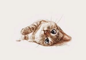 Pretty Drawing Of A Cat Pretty Sure This is Nala Cat Cool Art Wallpaper