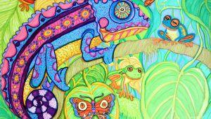 Rainforest Drawing Easy Chamelion and Rainforest Frogs Frog Art Jungle Art