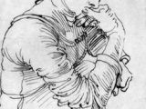 Renaissance Drawings Easy 160 Best Renaissance Baroque Drawings Images Drawings