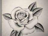 Rose Drawing Tumblr Easy Tatoo Art Rose Rose Tattoo Design by Alyx Wilson society6 Hand
