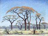 Savanna Drawing Easy Jh Pierneef Acacia Trees In the Veld 1954 south African