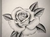 Sketch Drawings Of Roses Angel Drawing Of Pencil Sketches Rose Tattoo Designs Pencil