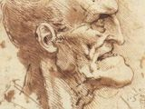 Skull Drawing Da Vinci 45 Best Leonardo S Sketches Images Da Vinci Drawings Drawing S