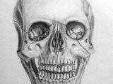Skull Drawing Front Realistic Skull Drawing Realistic Skull Drawing How to Draw A Skull