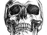Skull Drawing Front Skull Sketch Tattoo Skull Sketch Drawings Skull Art
