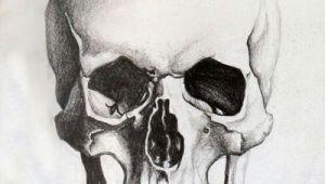 Skull Drawing Guide Skull Sketch Tattoo Skull Sketch Drawings Skull Art