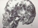 Skull Drawing Hd 19 Best Skull Sketches Images