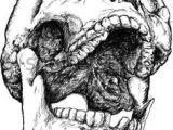 Skull Drawing Open Mouth 437 Best Skull Reference Images In 2019 Skulls Skull Bones Bones