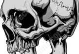 Skull Drawing Side Side View Of Gray Human Skull Tats Pinterest Skull Skull Art
