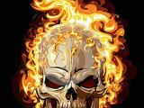 Skull Drawing with Fire 178 Best Skulls Flame Art Gallerys Images Flame Art Skulls