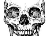 Skull Drawing with Headphones Vector Black and White Illustration Of Human Skull with A Lower Jaw