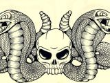 Skull Drawing with Snake Snakes Skulls Art Illustrations Skull Illustration Art Snake