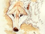 Speed Drawing Of A Wolf Pin by Tia Martin On Werewolves and Wolves Wolf Fantasy Wolf