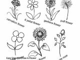 Steps for Drawing A Rose Easy Steps to Draw A Flower Prslide Com