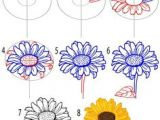 Sunflower Drawing Easy Step by Step 28 Best Flower Drawing Tutorial Images Flower Drawing