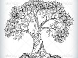 Trees that are Easy to Draw Drawn Plant Peepal Tree Pencil and In Color Drawn Plant