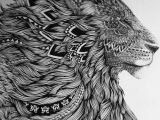 Tumblr Drawing Lion 13 Line Work Of Lion No Idea who the Artist is but Stunning Art