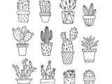 Tumblr Kaktus Drawing 47 Best Cactus Drawing Images Paintings Cactus Drawing Doodles