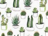Tumblr Kaktus Drawing Cactus Succulents iPhone Wallpaper Background Lockscreen Photos