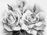 Types Of Roses Drawings Beautiful Sketches Of Flowers Beautiful Rose Flower Bouquet