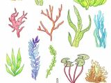 Underwater Drawing Ideas Underwater Plants Print Watercolor Painting Art Illustration