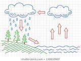 Water Cycle Drawing Easy Vectores Imagenes Y Arte Vectorial De Stock sobre