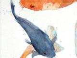 Watercolor Drawing Tumblr Hand Picked Lockscreens Fish In 2019 Koi Fish Watercolor Art