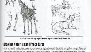 Weatherly Guide to Drawing Animals Pdf the Weatherly Guide to Drawing Animals