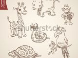 Weird Animal Drawings Wild Life Zoo Comic Friendly Funny Stock Vektorgrafik