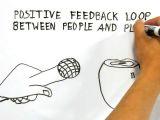 Whiteboard Hand Drawing Animation Whiteboard Animations Whiteboard Animated Videos