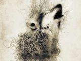 Wolf Drawing Abstract 17 Best Abstract Wolves Images Abstract Wolf Wolves Wolf Drawings