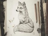 Wolf Drawing Abstract Pencil Drawing Illustration Art Retro Vintage Old Fox Red