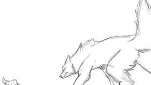 Wolf Drawing Base Wolf Fight Animation by Runeme Deviantart Com On Deviantart Art