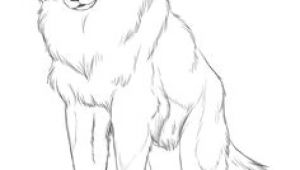 Wolf Drawing Detailed 109 Best Wolf Images Wolf Drawings Art Drawings Draw Animals