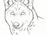 Wolf Drawing Easy Face 61 Best Wolf Images Wolves Drawing Ideas Drawings
