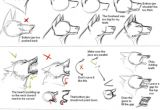 Wolf Drawing Easy Step by Step How I Draw Wolf Heads by theshadowedgrim On Deviantart Animal