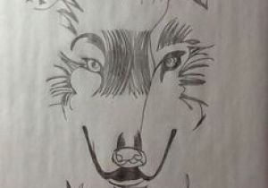 Wolf Drawing Grid 113 Best Rex S Freehand Drawings Images On Pinterest Draw Drawing