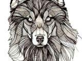 Wolf Drawing In Color Resultado De Imagem Para Geometrics Draw Color Drawings Drawings