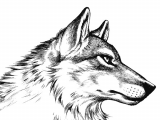 Wolf Drawing Lines Arrogant Nonchalance Right to Left In 2019 Pinterest Wolf