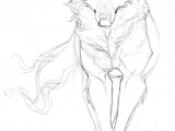 Wolf Drawing Reference Pin by Kristen Fletcher On Drawing References Lobo Dibujo Arte