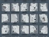 Wolf Drawing Styles 25expressions Challenge Wolf by Tanathe Deviantart Com On