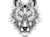 Wolf Drawing to Trace 500 Wolf Pictures Royalty Free Images Stock Photos and Vectors