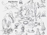 Wolf Drawing Tutorial Deviantart Wolf Sketches 8 28 13 by Dj88 On Deviantart
