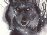 Wolf Drawing Watercolor Greeting Card Spiritual Art Watercolor Spirit totem Animal Wolf