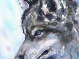 Wolf Drawing Watercolor Wolf north Watercolor Print Of the original Watercolor Painting Blue