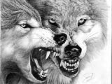 Wolf Jaw Drawing Hungry Wolfs My Art and Graphics Pinterest Wolf Wolf